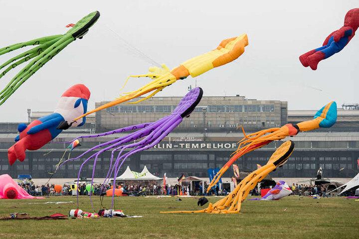 Auch in diesem Jahr findet wieder das Festival der Riesendrachen auf dem Tempelhofer Feld statt.
