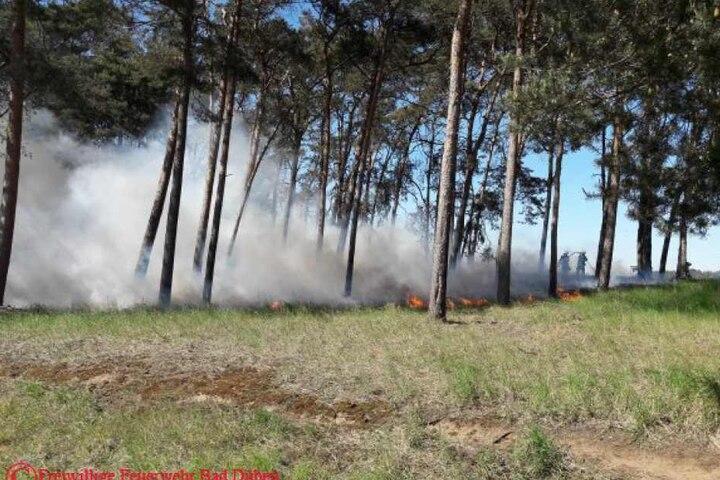 Die Kameraden aus sieben umliegenden Freiwilligen Feuerwehren mussten einen rund 1000 Quadratmeter großen Waldbrand löschen.