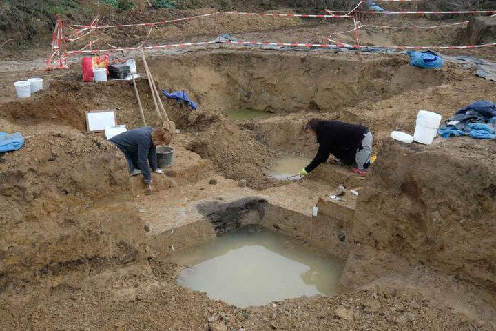 Bei Erschließungsarbeiten zum Bau eines Gewerbegebietes wurde ein etwa 6000 Jahre altes Grubenhaus, komplette Grundrisse von Pfostenhäusern sowie zwei Brunnenschächte aus der Jungsteinzeit entdeckt.