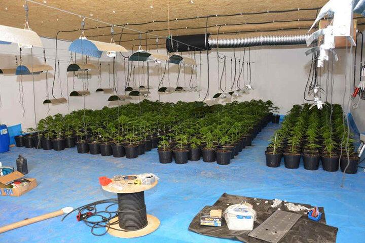 Auch Marihuana und tausende Euro Bargeld haben die Polizisten hier gefunden.