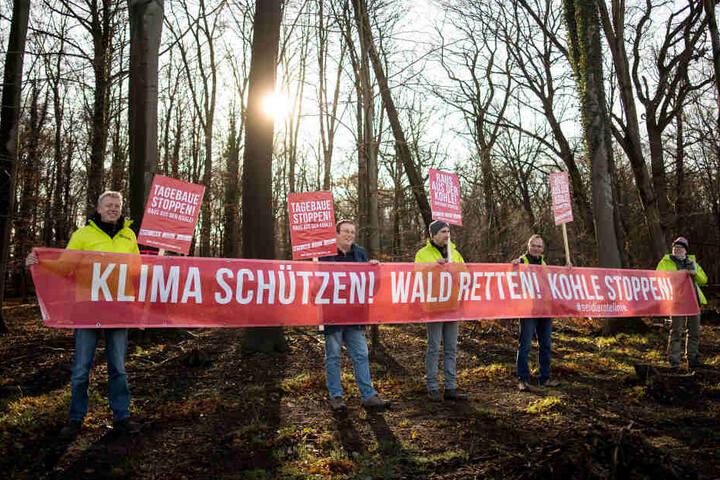 An diesem Sonntag wollen die Menschen gegen die Rodung von Waldflächen protestieren.