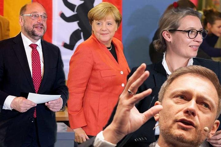 Die Spitzenkandidaten von SPD, CDU, FDP und AfD.