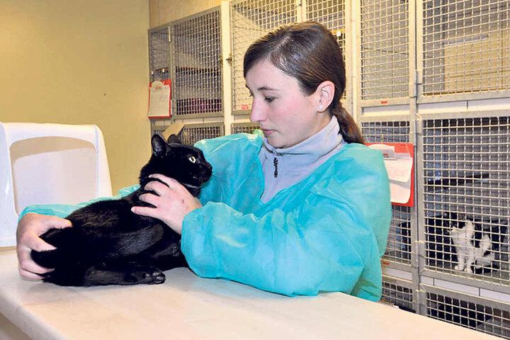 Tierpflegerin Madeleine Thümmel (28) mit ihrem neuesten Schützling Joshua in der Vielauer Quarantäne-Station.