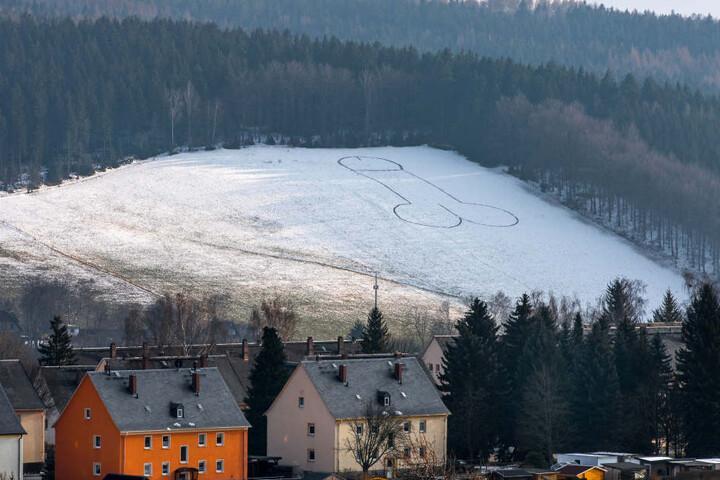 Da prangt er: Der Riesen-Penis auf einem Feld in Lößnitz im Erzgebirge.