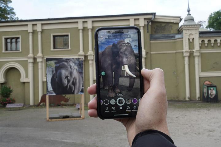 """Durch die App werden leere Gehege plötzlich mit """"lebendigen"""" Tieren gefüllt."""