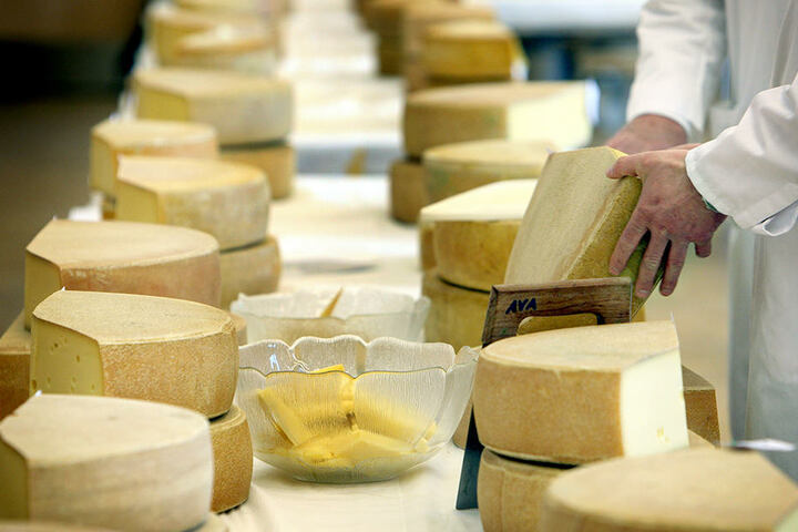 Die Berliner Käsetage finden zum dritten Mal in der Arminus Markthalle statt.