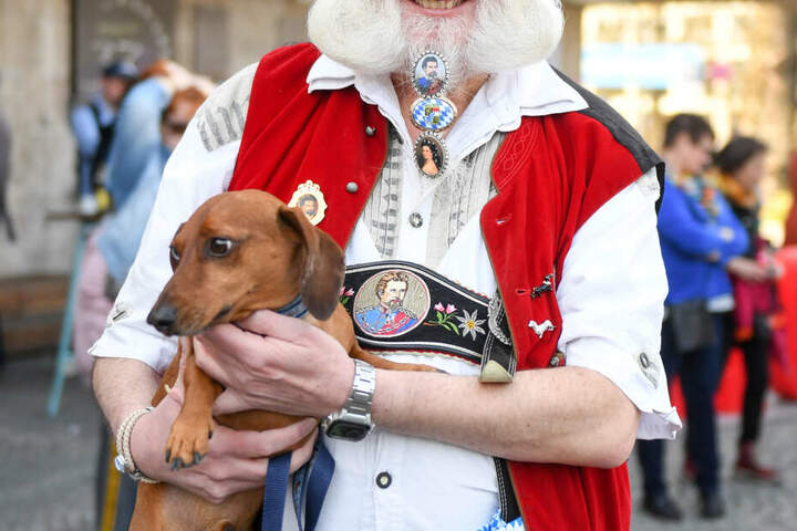 Werner Waldhütter präsentiert bei der Dackelparade den Dackel Twinky.