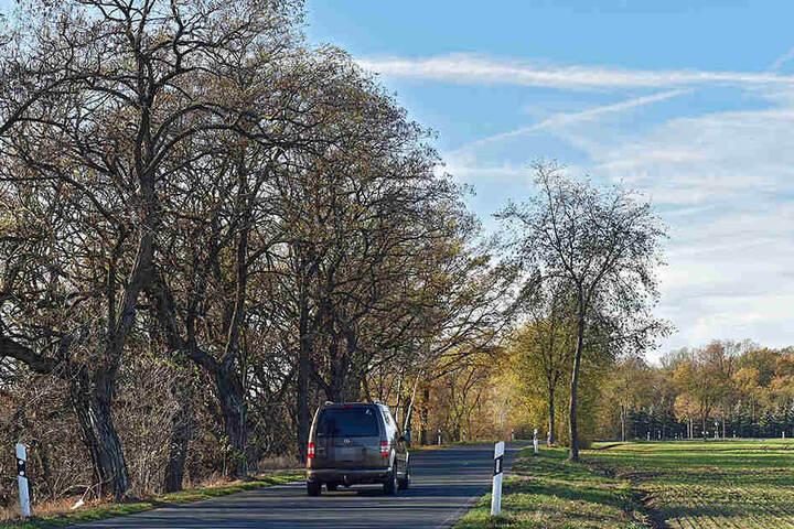 Die Todesstraße kurz vor Strauch: Ob sich dort die beiden Autos ein Rennen lieferten, wird jetzt untersucht.
