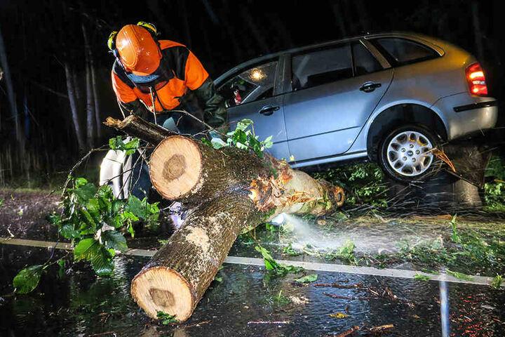 Die Rettungskräfte mussten den Stamm zerlegen, um das Auto bergen zu können.