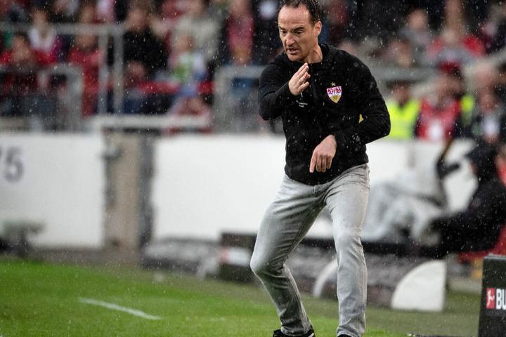 Wie er leibt und lebt: Ex-VfB-Interimstrainer Nico Willig steht im Mai gegen Wolfsburg an der Seitenlinie.