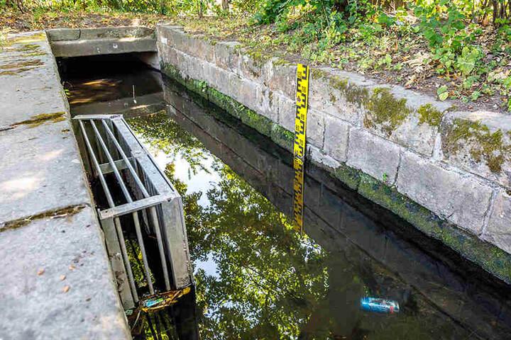 Schotten dicht. Derzeit geht kein Wasser vom Kaitzbach mehr in die Teiche des Großen Gartens.
