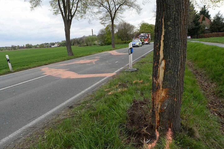 Der 23-Jährige krachte mit seinem Auto in diesen Baum.