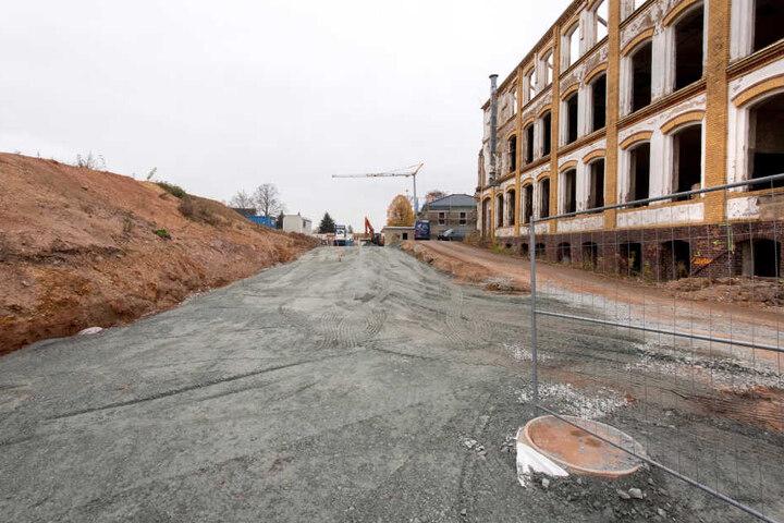 An der Fürstenstraße entsteht auf dem Gelände des VEB Fahrzeugelektrik ein Wohngebiet. Die Benennung einer Straße in Riemannweg wurde vertagt.