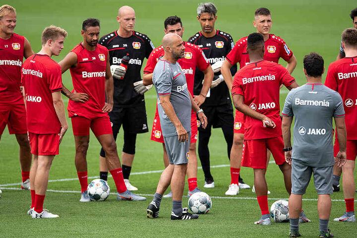 Trainer Peter Bosz sucht für seinen Kader noch Verstärkung in der Defensive.