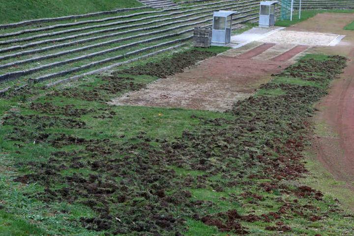 Auch der Rasen rund um die Sprunggrube ist zerstört.