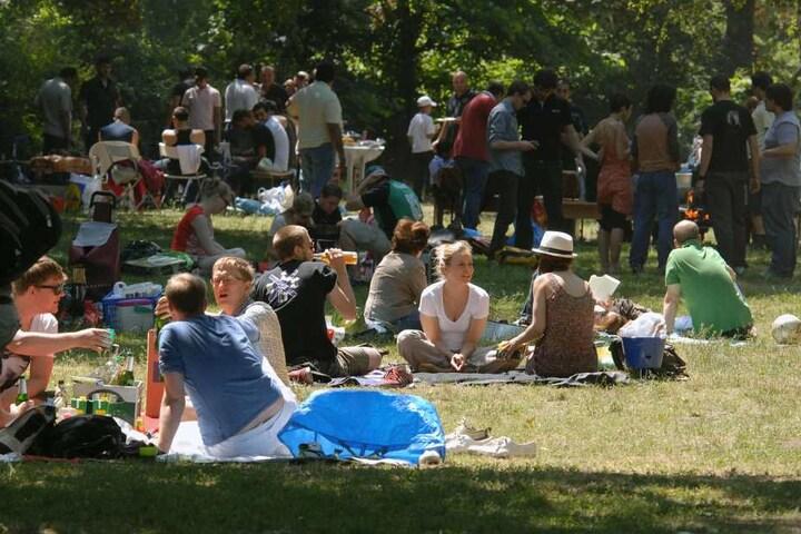 Wer bei schönem Wetter gern picknickt kennt die Probleme mit den Wespen.