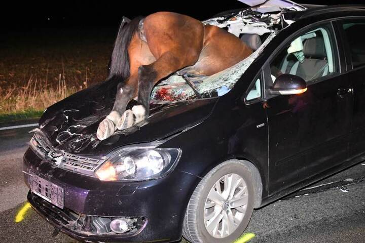 Die Fahrerin wurde bei dem Unfall nur leicht verletzt.