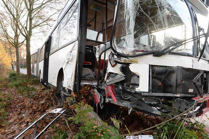 Der Bus kam von der Fahrbahn ab und krachte gegen einen Baum.