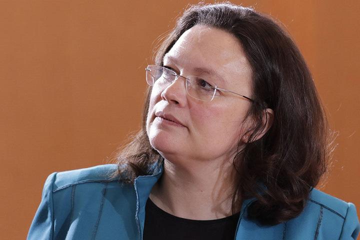 Bundesarbeitsministerin Andrea Nahles (SPD, 46) hatte im März 2015 angekündigt, in dem Bericht erstmals den Einfluss von Eliten und Vermögenden auf politische Entscheidungen untersuchen zu lassen.