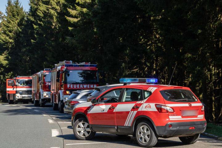 Rund 40 Feuerwehrleute waren vor Ort.