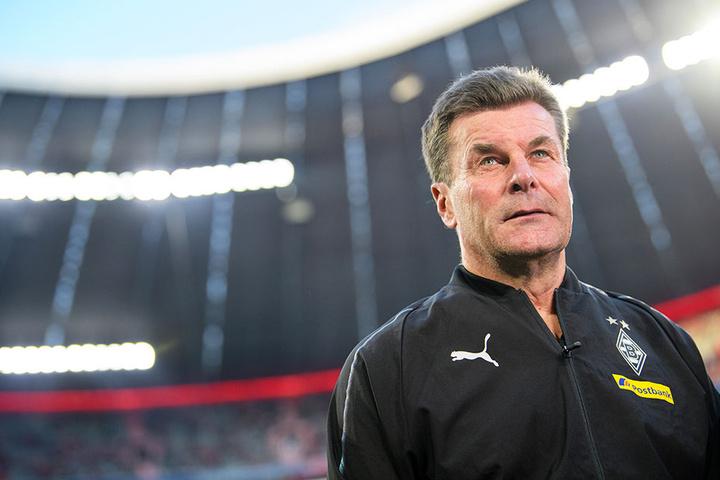 Auch Borussia-Mönchengladbach-Coach Dieter Hecking ärgert sich maßlos über den respektlosen Umgang mit Trainern.