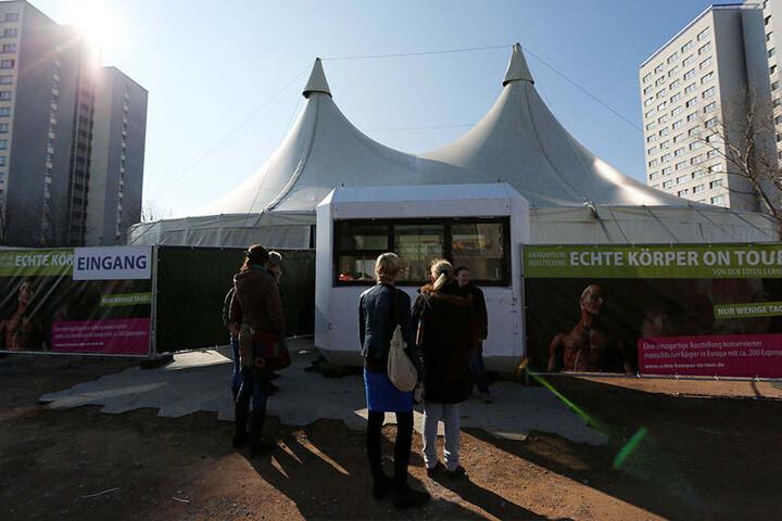 In einem solchen Zelt werden die Ausstellungsstücke zu sehen sein.