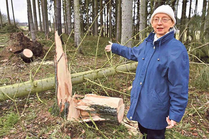 Veronika Hegner (68) fürchtet sich vor weiteren Baumstürzen.