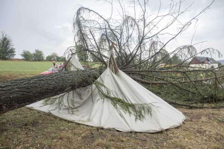 Eine Lärche stürzte auf das Zelt erzgebirgischer Mittelalterfans.