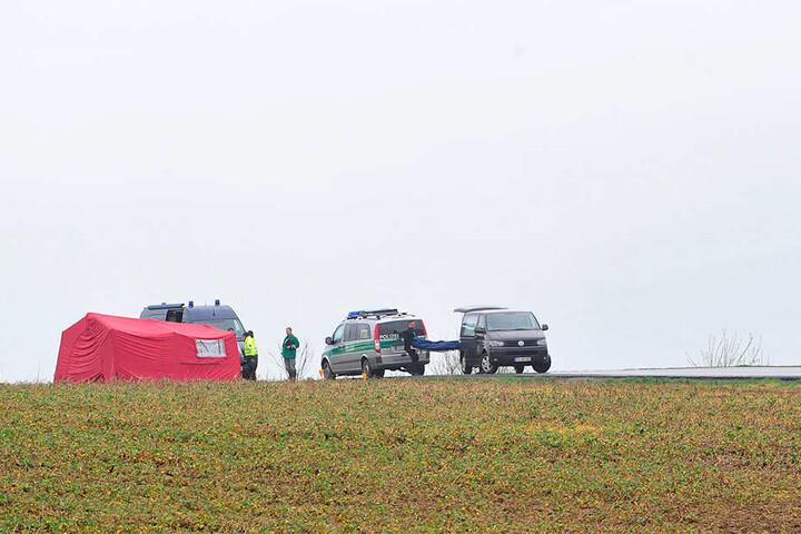 Die Leiche von Rico S. lag auf einem Feld.