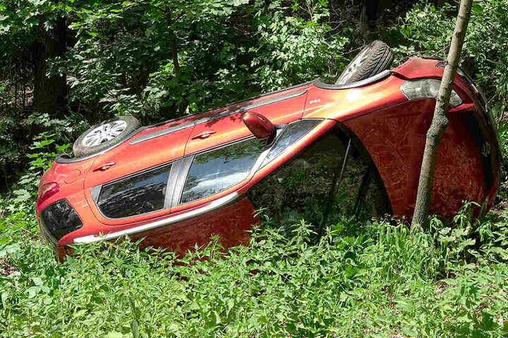Der Suzuki blieb zwischen Bäumen auf dem Dach liegen.
