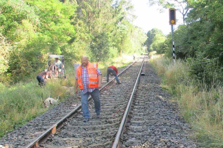 Die Bahnstrecke musste nach dem Unfall gesperrt werden.
