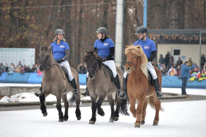 Dank spezieller Hufbeschläge konnten die Pferde auf dem Eis laufen.