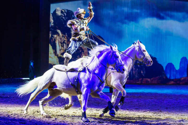 Die Pferdeshow gastiert in der Lanxess-Arena.