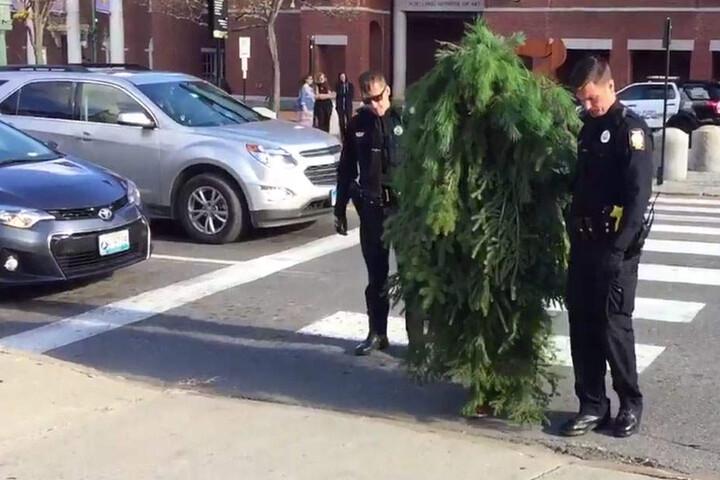 Der als Baum verkleidete Mann wollte auf einer Kreuzung den Verkehr blockieren.