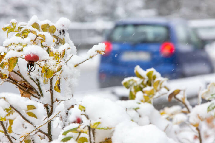 Im Thüringer Wald hat es den ersten kräftigen Schneefall gegeben.