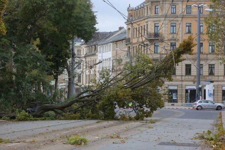Auf der Leipziger Straße in Dresden wurde die Oberleitung beschädigt.