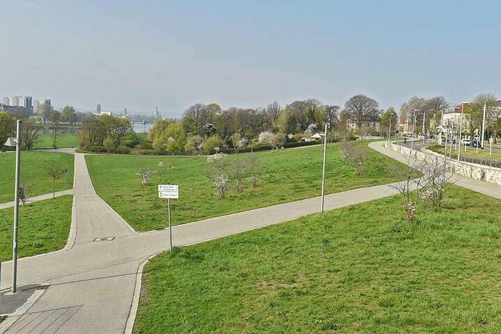 Der Oberkiesweg Richtung Elberadweg. Hier wurde 'Gina' von einem rasenden Radfahrer überfahren.
