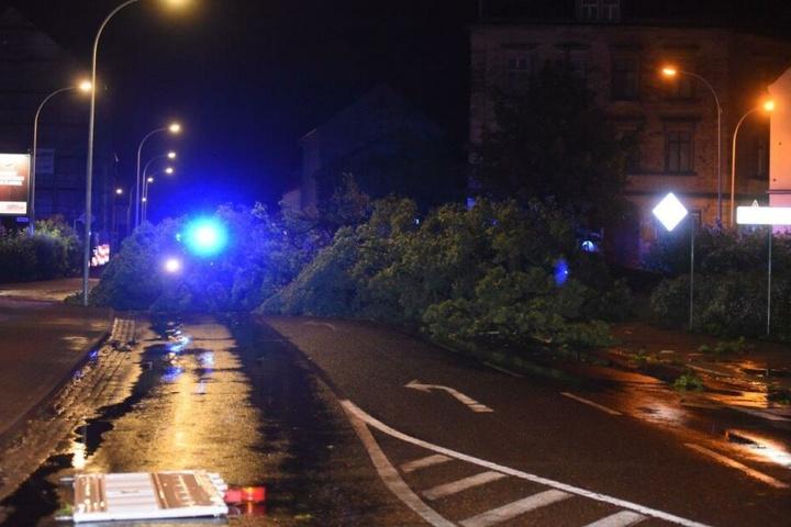 In Zittau versperrten umgestürzte Bäume die Straßen.