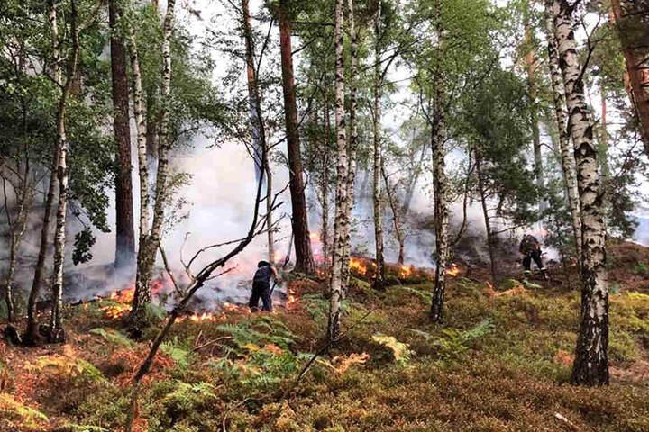 Ein Großaufgebot der Feuerwehr musste den Brand in den Felsen löschen