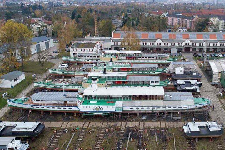 """Die Slip-Anlage der Laubegaster Werft ist ausgelastet: Hinter der """"Leipzig"""" liegen die """"Pirna"""", """"Kurort Rathen"""" und """"Pillnitz"""" auf dem Trockenen."""