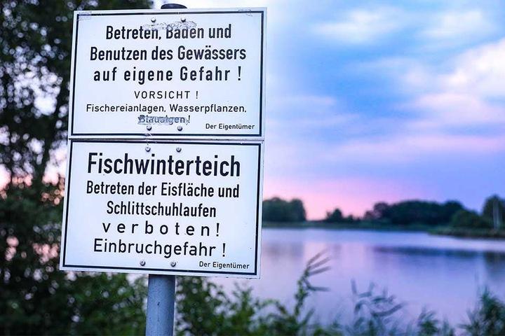 Mehrere Warnschilder am Ufer weisen auf die Gefahren des Badens im Dippelsdorfer Teich hin.