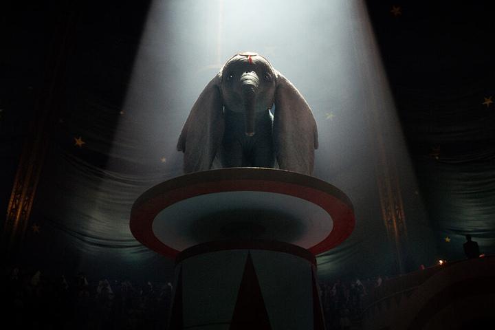 Muss über sich selbst hinauswachsen: Der goldige Elefant Dumbo.