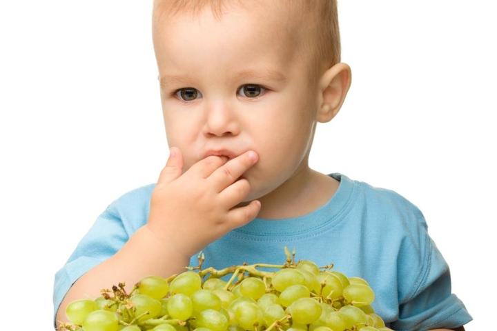 Weintrauben sollten für Kinder lieber zerkleinert werden.