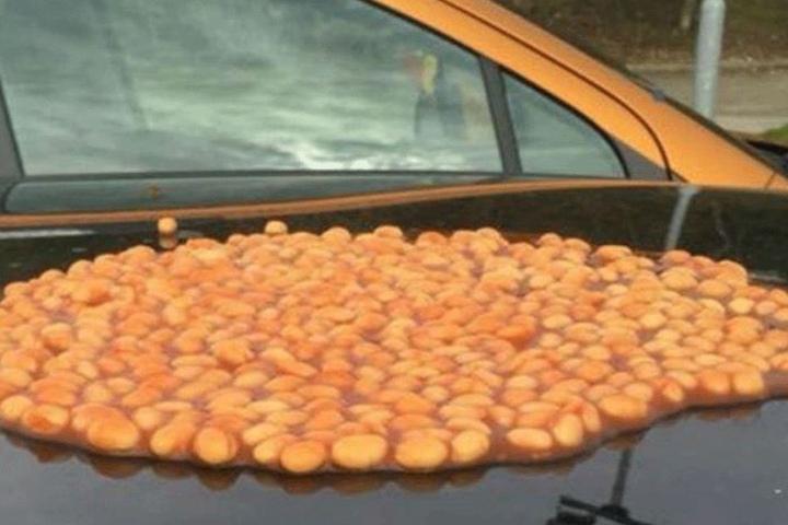 Auf ihrem Auto wurde eine große Portion Baked Beans verteilt.
