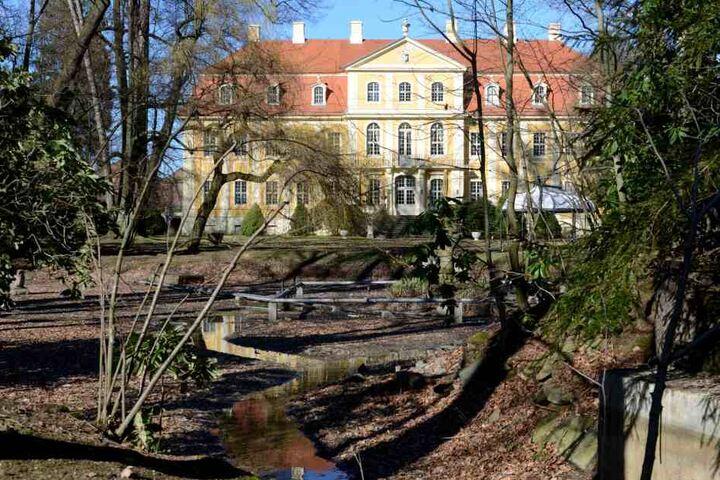Der fünf Hektar große Park hieß zu DDR Zeiten nach dem Philosophen Johann  Gottlieb Fichte und ist sichtlich in die Jahre gekommen.