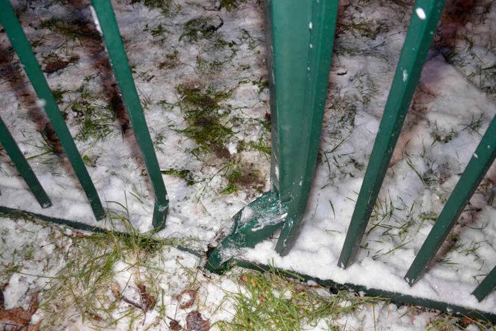 Allein der Schaden am Zaun beläuft sich auf rund 1000 Euro.