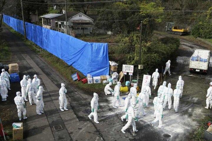 Die Infektionskrankheit ist in einem Forschungszentrum für Nutztiere aufgetreten.