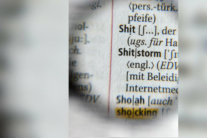 Durch eine Lupe ist der Begriff Shitstorm als Ausdruck für einen Entrüstungssturm in einem Internetmedium im neuen Duden des Jahres 2013 zu sehen. (Archivbild/Symbolbild)