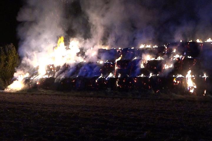 Die Strohballen waren nicht zu retten. Sie wurden alle ein Raub der Flammen.