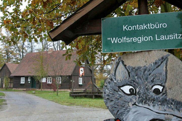 Das Wolfsbüro in Rietschen bekommt bald einen neuen Namen.